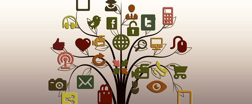pohon media