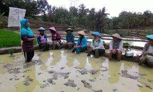 Srikandi Jalatunda Banjarnegara Peduli ADMINDUK .Foto: Rullyanto